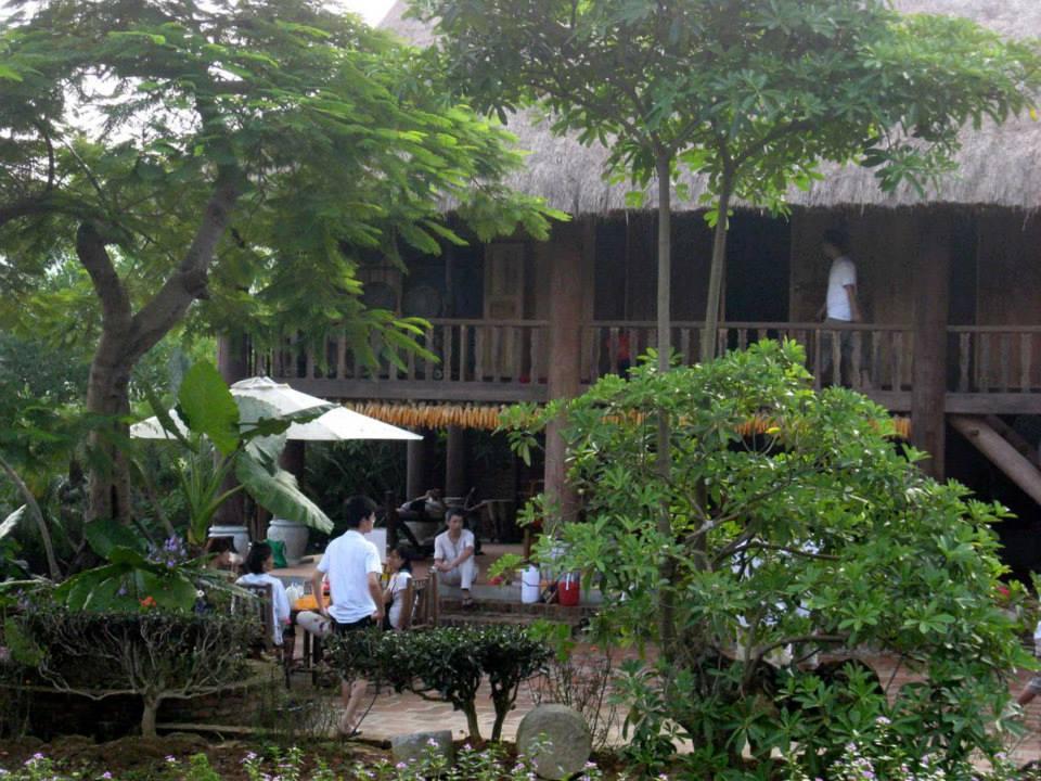 thai-cuc-quyen-long-viet-2011-2