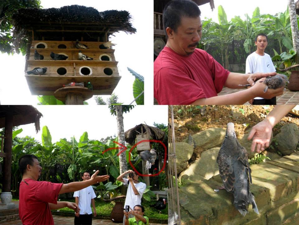 thai-cuc-quyen-long-viet-2011-9